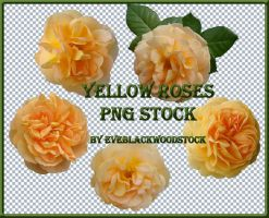yellow roses PNG stock pack by EveBlackwoodStock