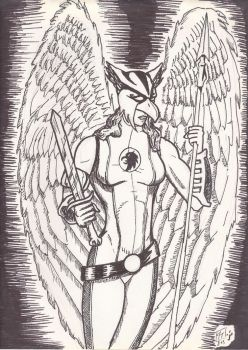 Hawkgirl by captblitzdawg