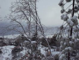 Snow In The Mountains-6 by Bearie23
