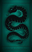 - Year of the Snake - by 13blackdragons
