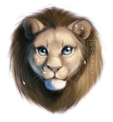 Leo by CatherineSt