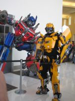 BC09 066 - 2K7 Bee Cosplay 02 by lonegamer7
