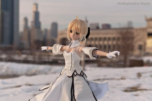 DD Saber Lily Dance In Snow by Wolfheinrich