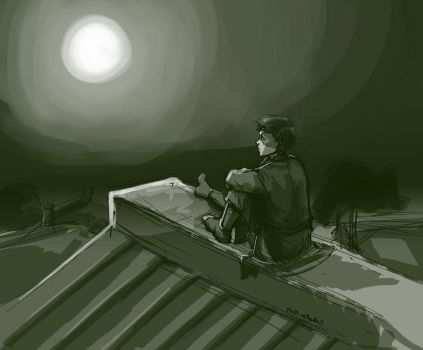 quiet rooftops by vivaci