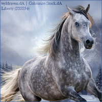 Stable Avatar ~ Winter Premade by Liberty-Designs