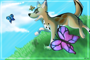 Summer Hill by wolfy987