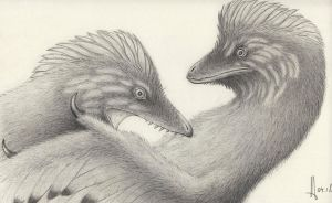 Anchiornis squabble by RavePaleoArt