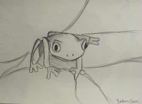 Frog Doodle by Muse-4-Life