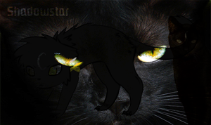 Shadowstar Banner by spw6