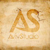 AvivStudio Wallpaper by AHDesigner