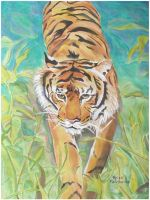Jungle Tiger by kfairbanks
