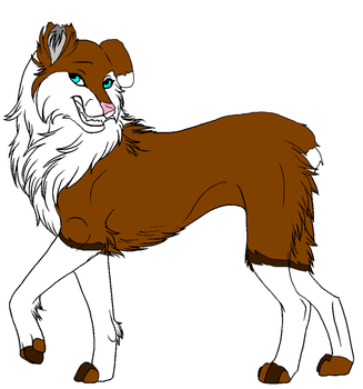 Collies New Design by SweetApplecookie