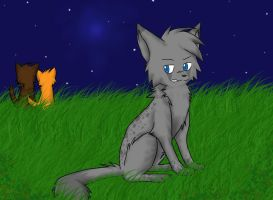 Ashfur's Anger by screms
