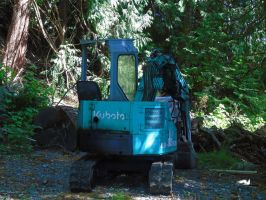 Tractor In Woods by wolfwings1