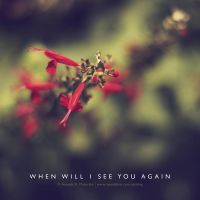 When well I see you again... by lalitkala