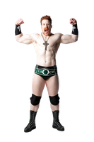 New Sheamus PSD 2010 by DecadeofSmackdownV2