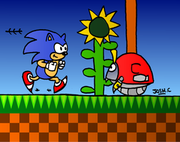 Sonic's 20th Anniversary by Young-Freddy