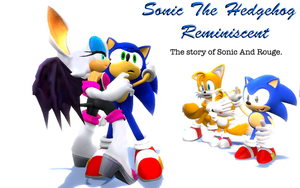 Sonic The Hedgehog Reminiscent Sonic And Rouge. by shadow759