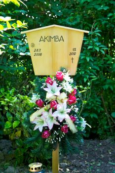 Akimba Grave by MisterWho