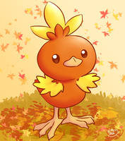 Torchic by Pachi-Mapache