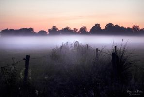 In the mists IV by WouterPera