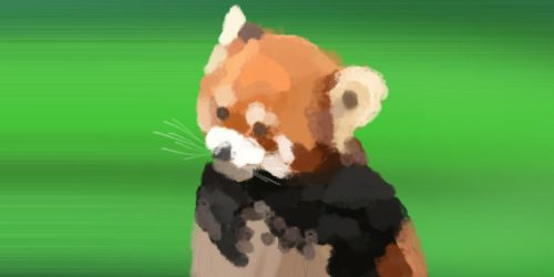 Red Panda by ChristopherBoland