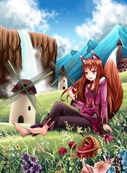 horo-spice and wolf by gin-1994