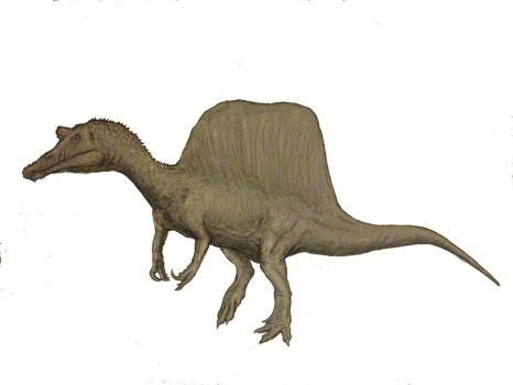 The New Look Spinosaurus by Ashere
