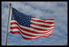 American Flag by icey-illusion