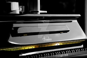 The Black Piano by Lu-Xin