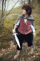 Cosplay of Frodo Baggins by Wolfik4444