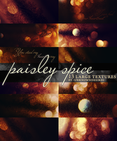 Paisley Spice .zip by unknowndesires-sonia