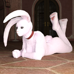 Possessive Bunny Girl (Transformania Pet Form) by Martiandawn