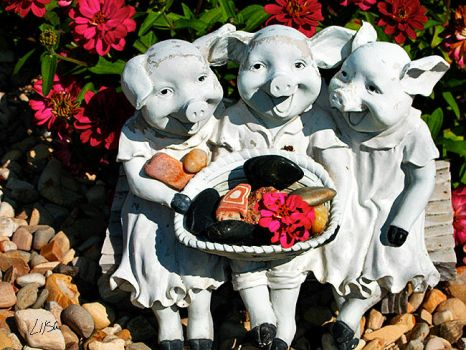 Three Little Pigs by happytimer