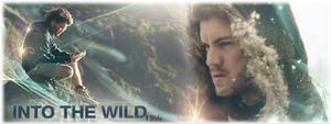 Into The Wild by Graphfun