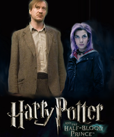 Harry Potter 6 - Remus Lupin and Nymphadora Tonks by Twilight-Contessa