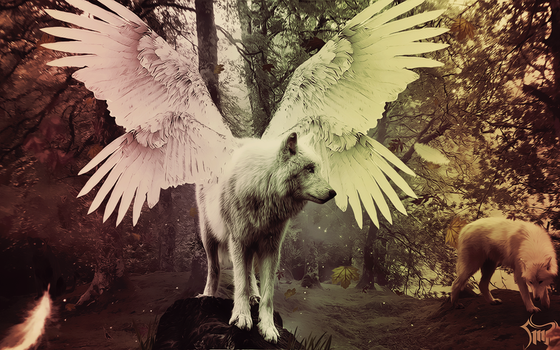 Forest Angel by SMlLE