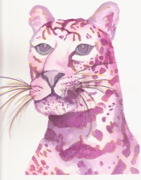 Pink Leopard Watercolor by SamIamArt