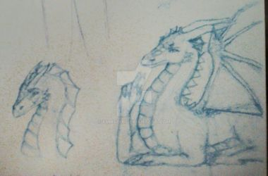 Dragon sketches by noobpinky