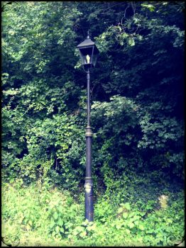 Lost and Old Street Lamp by mGusatovic