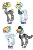 Rainbow Dash Shipping Adopts Auction (CLOSED) by TearyIris