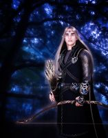 Elven Lord by Ladesire