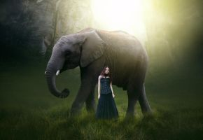 Final IMage by AnanduSunil