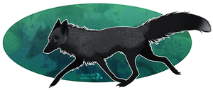 Silver Fox by Hymnsie