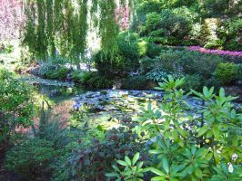 Butchart-Gardens1 by Trisaw1