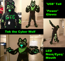 Tek the Cyber Wolf Partial Suit by PeaceWolfCreations