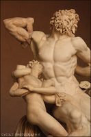 Laocoon by Cycia