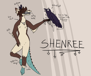 Shenree Reference 2018 by Shenree