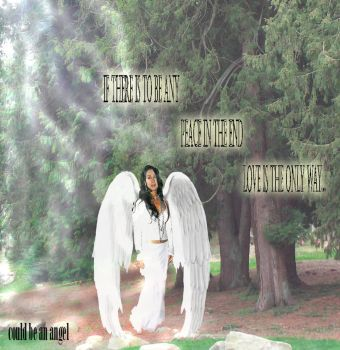 Cher: could be an angel by Meebi