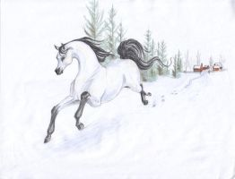 the free spirit of winter by captainhawkeh